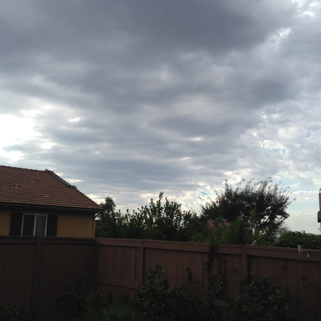 Where is My Rain? – Wordless Wednesday