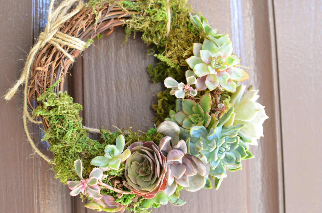 Succulent Wreath – Wordless Wednesday
