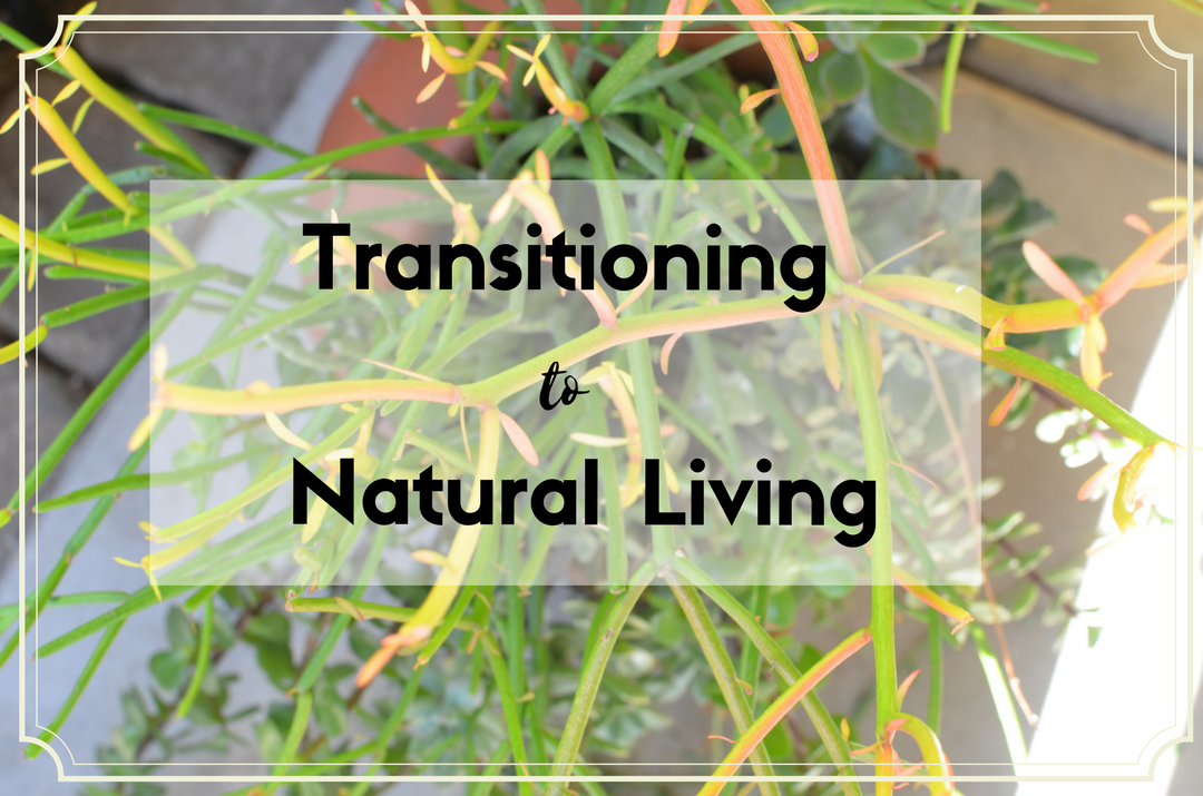 The start of my journey in natural living and the steps I plan to take